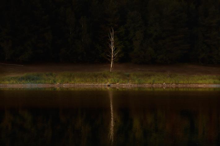 Jörg Marx photography august river tree