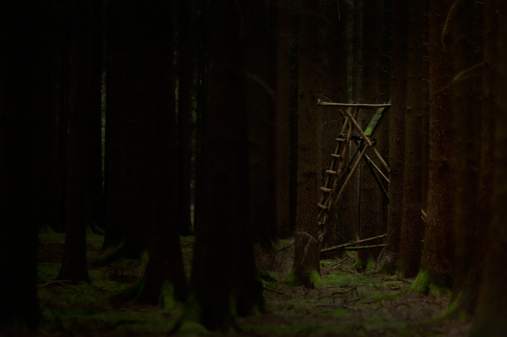 TreeStandPt2-2