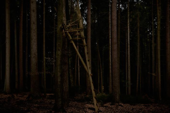 TreeStandPt2-4