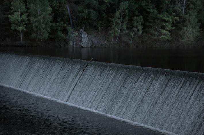 2015-07-The-Lake_MG_8342