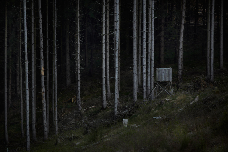 hochstand photo fotografie Jörg Marx