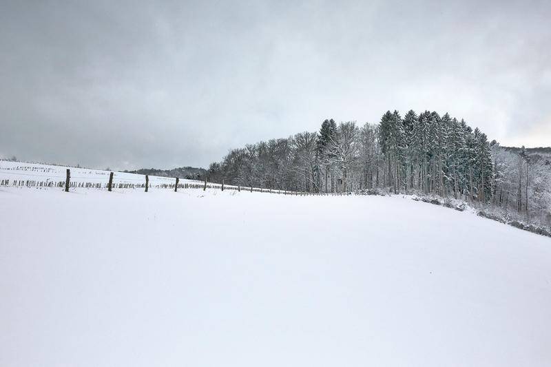 Winter Photography December 2017