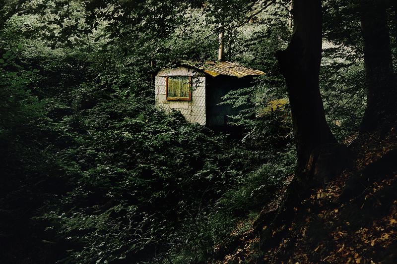 Jörg Marx Photo cabin forest